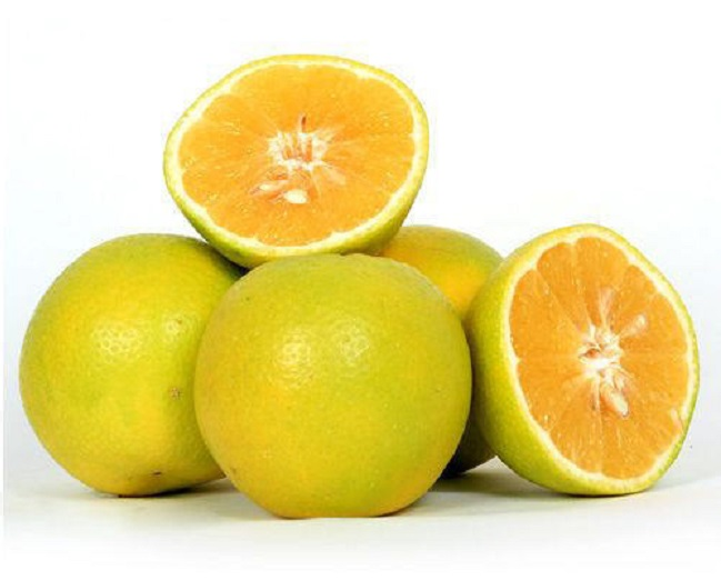 all-season-fruits-sweet-lime